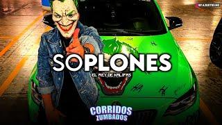 Soplones - El Rey De Kalifas (Corridos 2021)