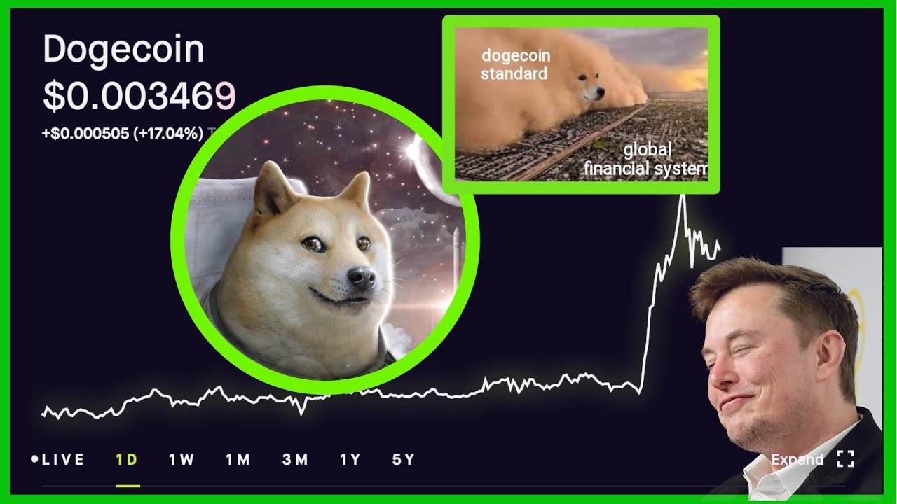 Elon Musk Tweeted About DOGE and It WENT Flying! Should ...
