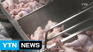 [YTN 실시간뉴스] 닭고기 납품 원가 1kg에 2천 …
