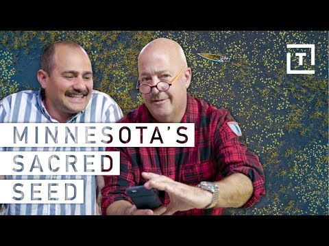 Cooking Minnesota Wild Rice with Andrew Zimmern || Food/Groups The Sacred Seed