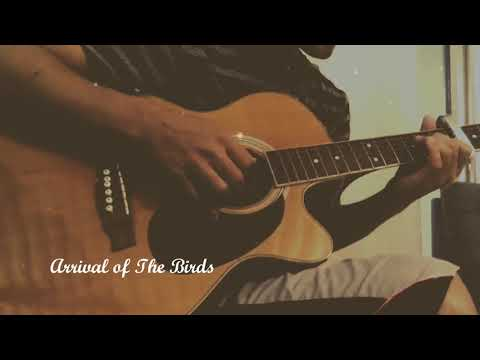 Arrival of the Birds - Guitar