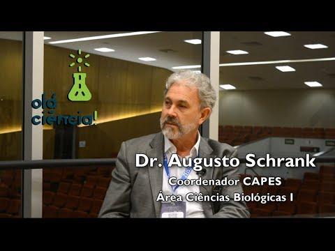 Qual a importância da CAPES para a pesquisa brasileira? - Dr. Augusto Schrank (Coordenador CAPES)