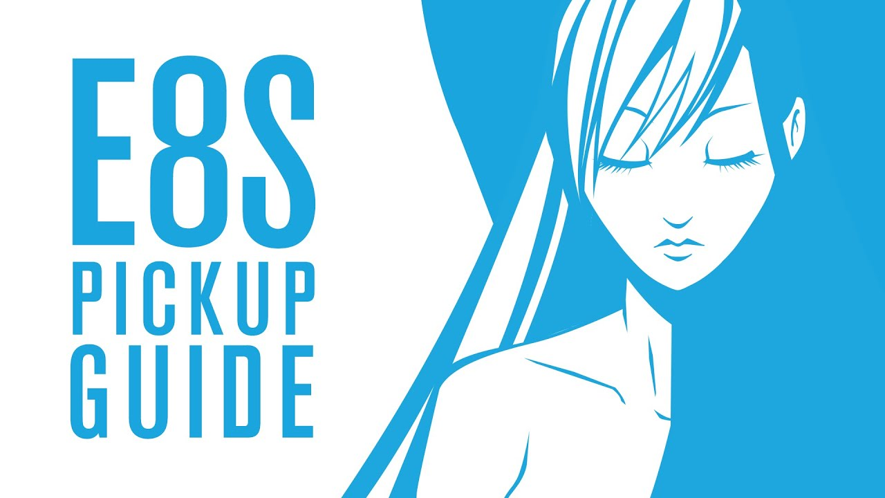 Download Pickup Guide   E8S Refulgence Savage