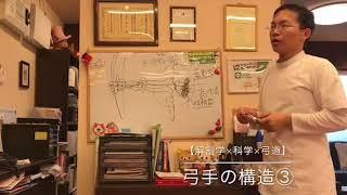 【解剖学×科学×弓道】弓手の構造③ 豊川の弓道もさつきバランス整骨院 thumbnail