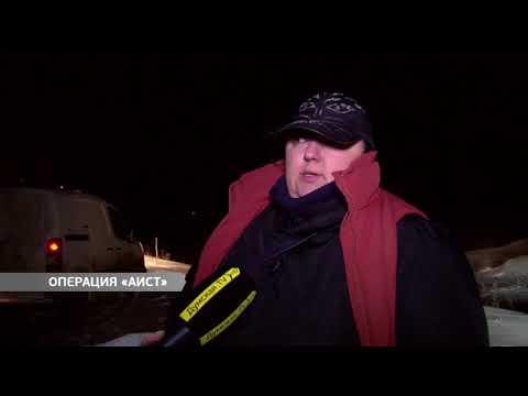 DumskayaTV: Операция «Аист»: активисты и журналисты спасали пернатых