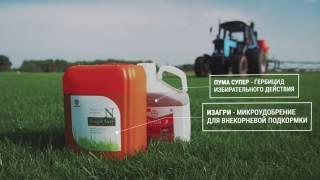 видео Производство и посадка рулонного газона