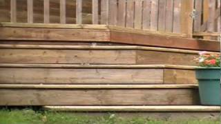 Wooden Deck Stairs With Gate & Flowers