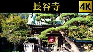 Hasedera , Kamakura , Japan 長谷寺 / 鎌倉 [ 4K ]