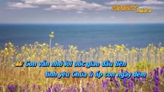 Cảm mến ân tình Karaoke HD  SH