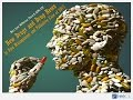 New Drugs and Drug News in Pain Management and Palliative Care of 2013