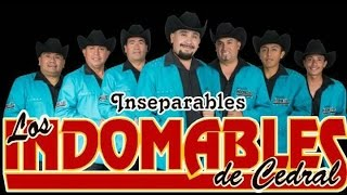 LOS INDOMABLES DE CEDRAL MIX