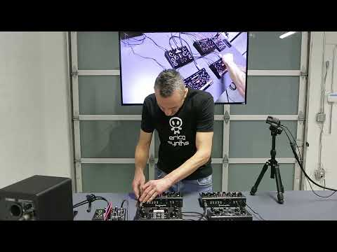 Girts from Erica Synths Live at Perfect Circuit