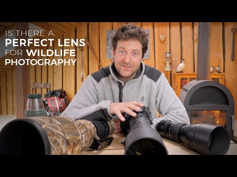 Is there a PERFECT LENS for WILDLIFE PHOTOGRAPHY - Could it be the Nikon 180-400mm?