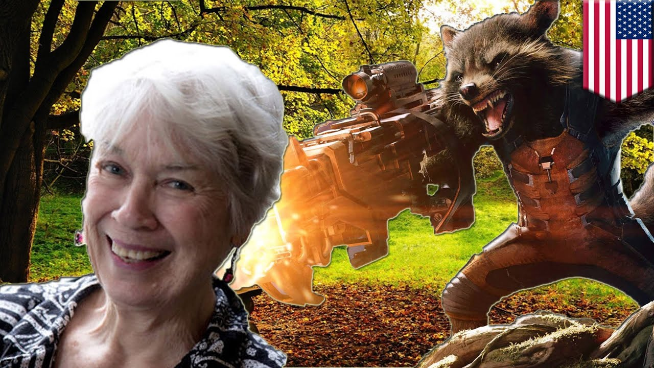75-year-old woman bitten by rabid raccoon