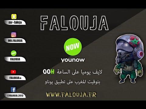 Falouja Live Nachat Freephone