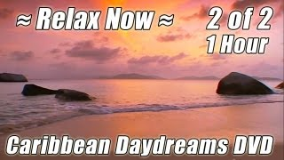 CARIBBEAN Vacation #2 Relaxing Virtual Beach Soothing Wave Sounds + Ocean Waves HOUR Playlist