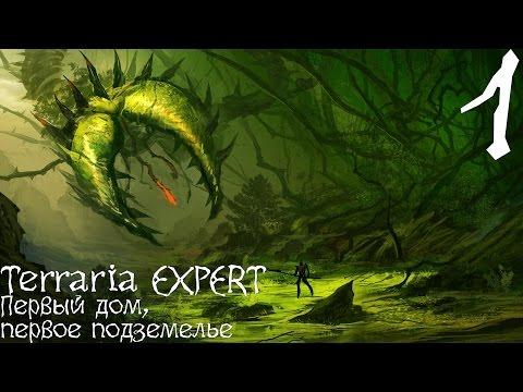 Terraria - EXPERT [COOP][#1]: Первый дом, первые подземелья