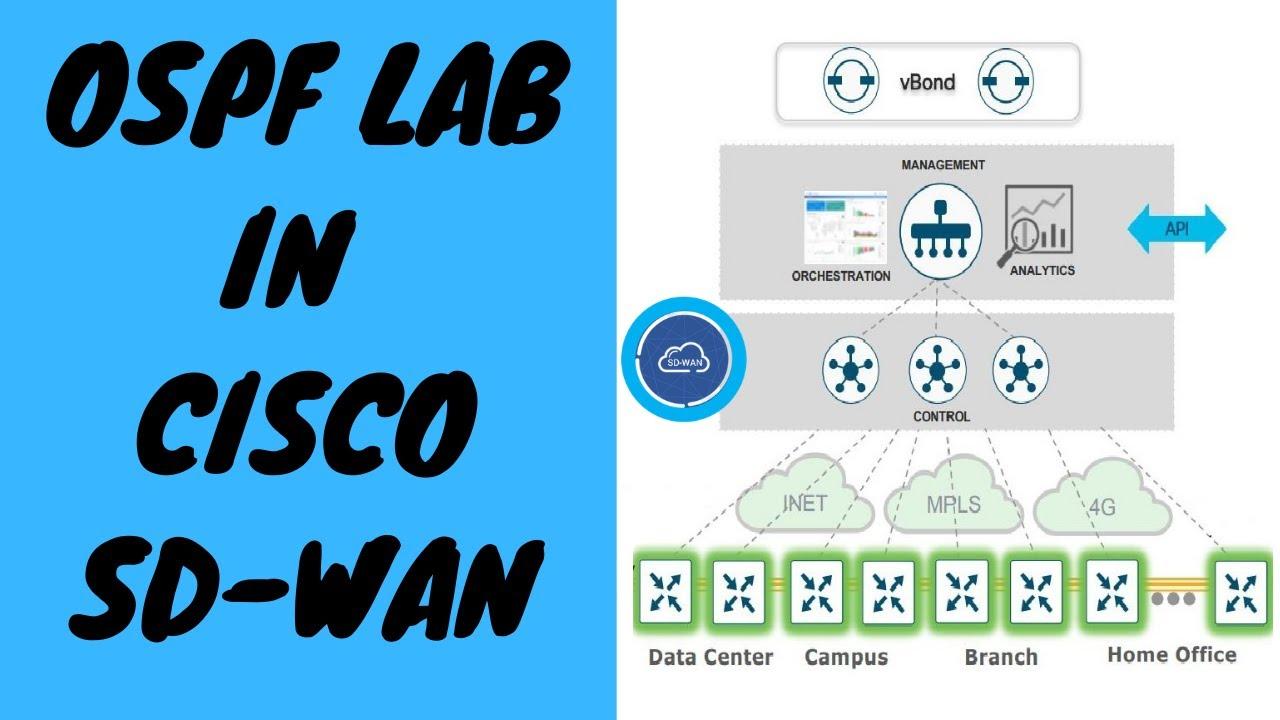 Cisco Sd Wan Basic Ospf Configuration Lab Cisco Sd Wan Tutorial In Hindi Youtube