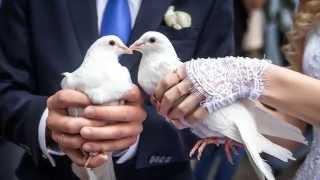 2014.06.14 Свадьба Алексея и Марии