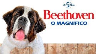 Beethoven: O Magnífico L Tres Dublagens (VHS/ Televisão, SBT E Rede Globo)
