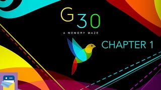 G30 - A Memory Maze: BIRDS DOGS RAINDROPS BRIDGE TREES Chapter 1 Walkthrough Guide (by Kovalov Ivan)