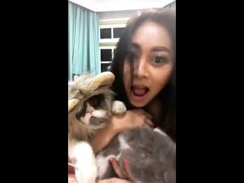 Sarah ardhelia ~ model hot indonesia