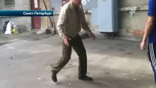 В Петербурге малолетние хулиганы крушат имущество и нападают на прохожих
