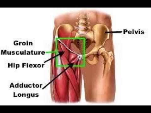 Are tight hip flexors causing your knee pain-learn hip flexor