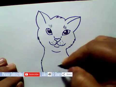 Cat S Mouth Drawing