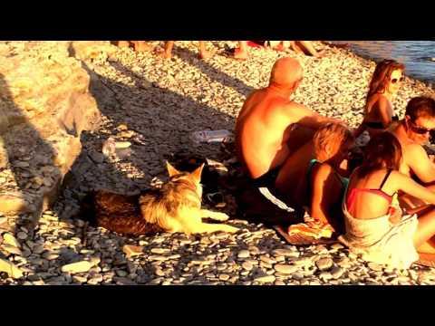 Нудисты видео смотреть олайн