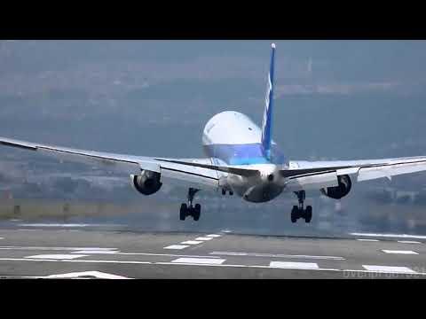 Dan Aviation Voice Reveal