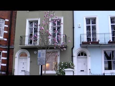 Vincent Square, London SW1P  Springtime Flowers