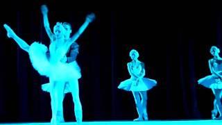 Московский Классический балет, фрагмент выступления на фестивале в Нью Дели, зал Сирифорт Аудиториум, 15 02 2011