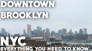 Downtown Brooklyn Travel Guide: Everything you need to know
