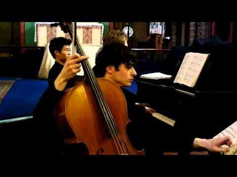 Beethoven - Cello concerto in G minor op 5. no 2. - David Williamson