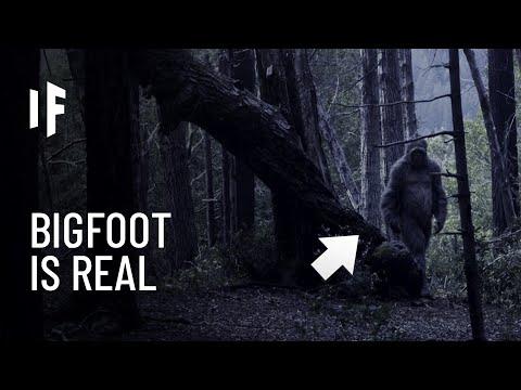 What If Bigfoot