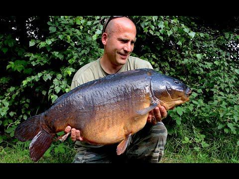 Watch A 30lb UK Carp Take The Hookbait!