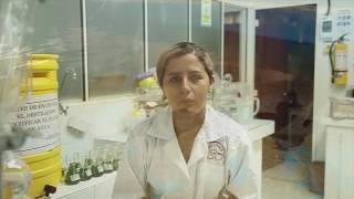 LAURA BOHÓRQUEZ MEDINA   BECARIA UNILLANOS - FSES