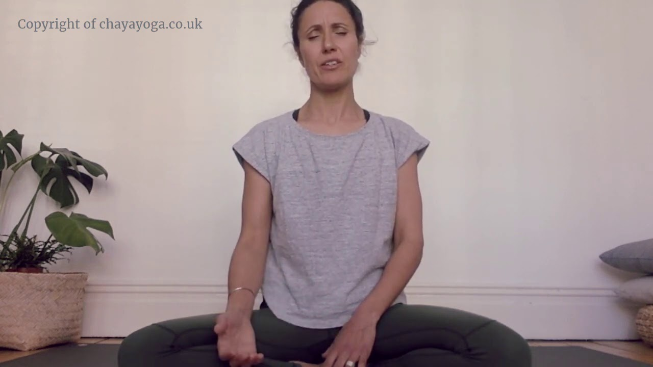 Moments in Meditation
