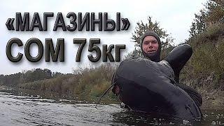 Подводная охота на Сома в коряжнике.