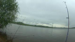 Рыбалка на реке Самара, ловим белую рыбу. Ловим белую рыбу на реке на донки.