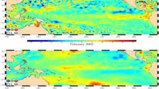 AVISO Tropical Pacific Sea Level Anomaly and Sea Surface Temperature Anomaly Animation  Slow
