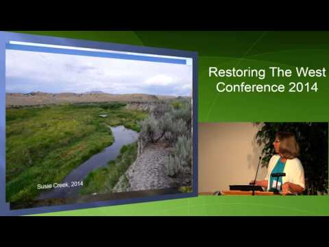 Managing Livestock Grazing for Riparian Recovery in Northeastern Nevada