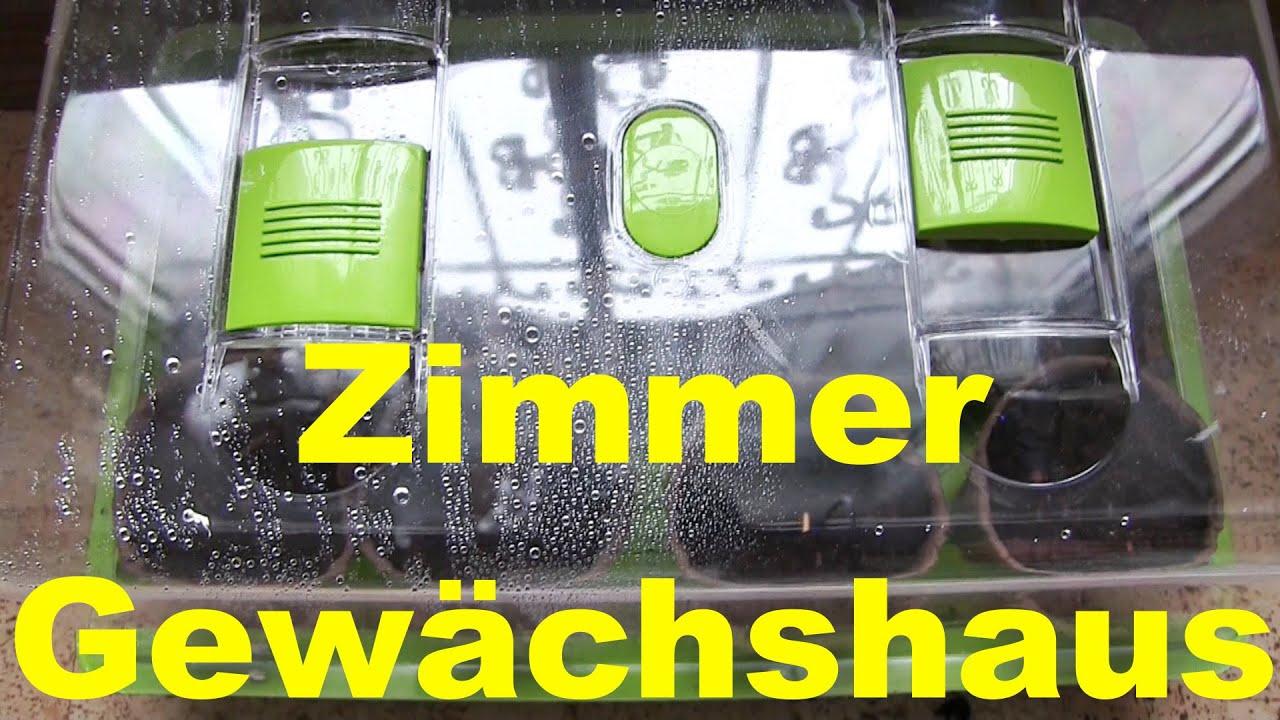 Update Zimmer Gewachshaus Modell Do It Yourself Diy Liegt Vorne
