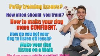 6 Dog Training Questions You Probably Don't Know The Answer To...