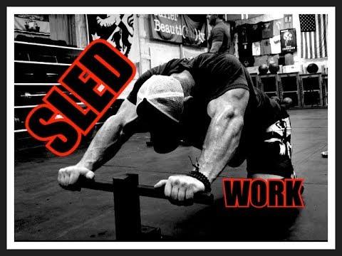 Do SLED WORK For Bigger, Stronger Legs - MASSIVELY Underrated!