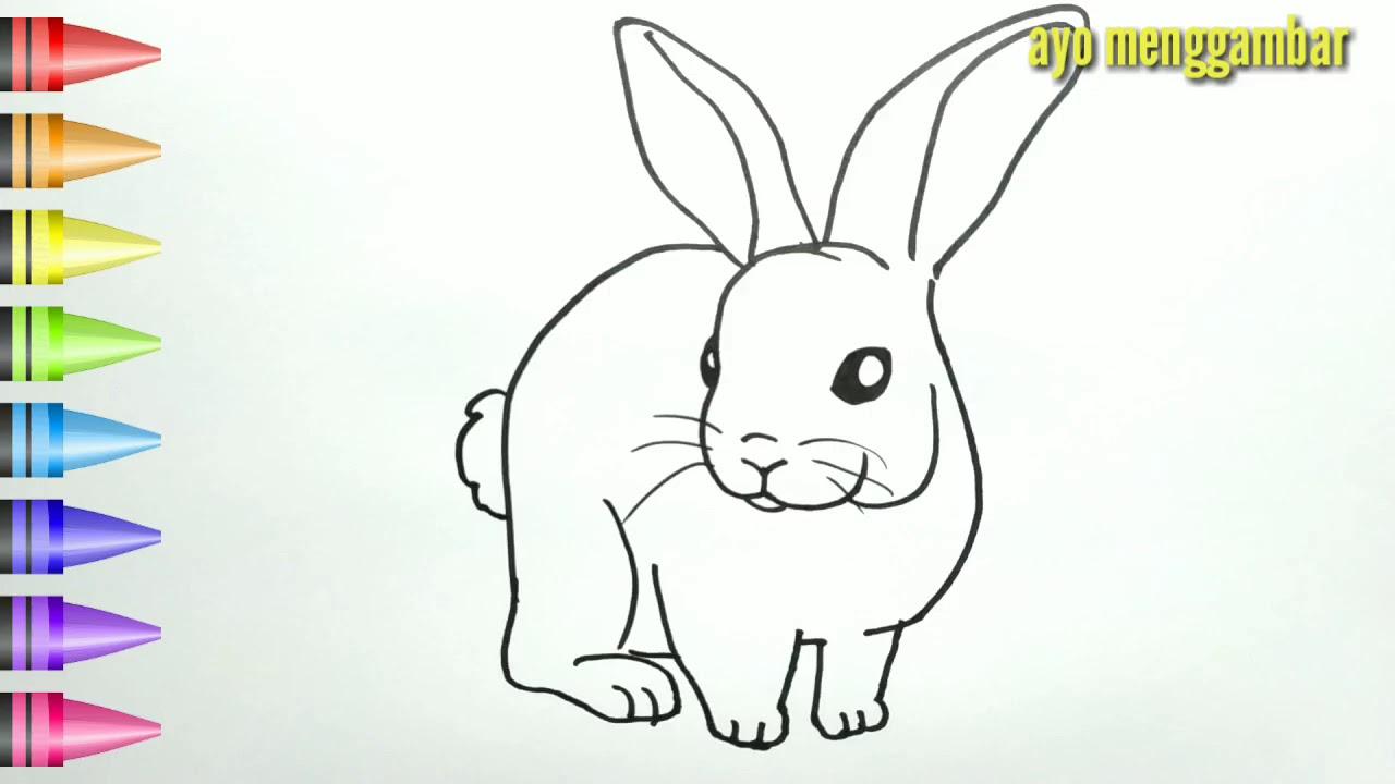 MUDAHNYA Ayo Belajar Cara Menggambar KELINCI Lucu Dan Mewarnai Kartun Untuk Anak Anak Indonesia