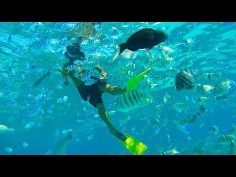Saving the best till last...Bora Bora (Sailing BareFeet Ep41)