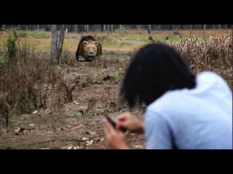ตัวอย่าง สไบ้ค์-กง คนหนังเหนียว 'Sbek Gong' (Officail HD Thai Version)