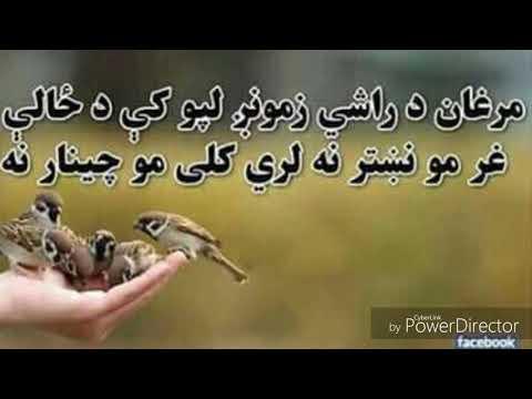 دا د ژوند د مور قيصه ده Dr israr atal pashto poetry